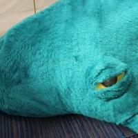 Yksityiskohta Kehrääjävalas