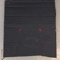 Vampyyrihai   13,7 x 15 cm   akryyli ja lyijykynä pahville