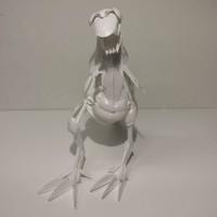 T-rex K 35cm, P 39cm, L 13cm MYYTY